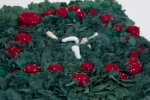 fairyring3 rugging crochet amigurumi kelly-marie mcewan