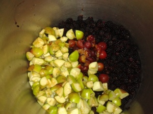 Apples cherry plums elderberry blackberry fruit