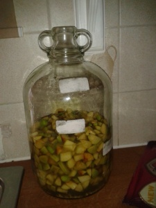 Fermenting apples cider vinegar making