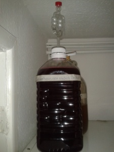 Demijohn rack siphoning elderberry wine