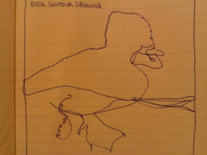 adrawingaday duck sketch moleskine project