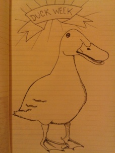 drawing project daily duck drawings ink sketch