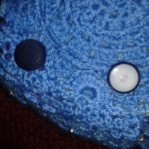 fitting button closure ukulele crocheted case
