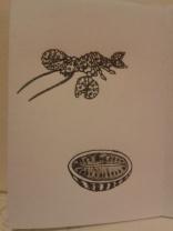 kellymarietheartist ink melon lobster sketching zine