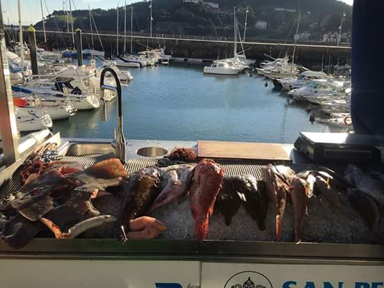 Tourist sights fish marina Spain