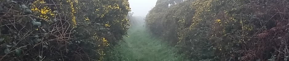 Hedgerow walks parish pathways Cornwall church country