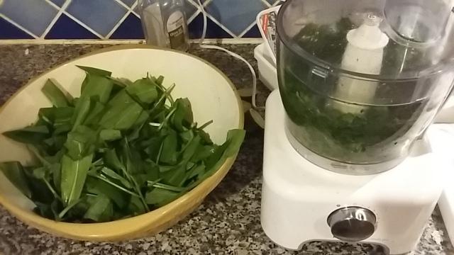 Wild garlic nettle pesto how to make