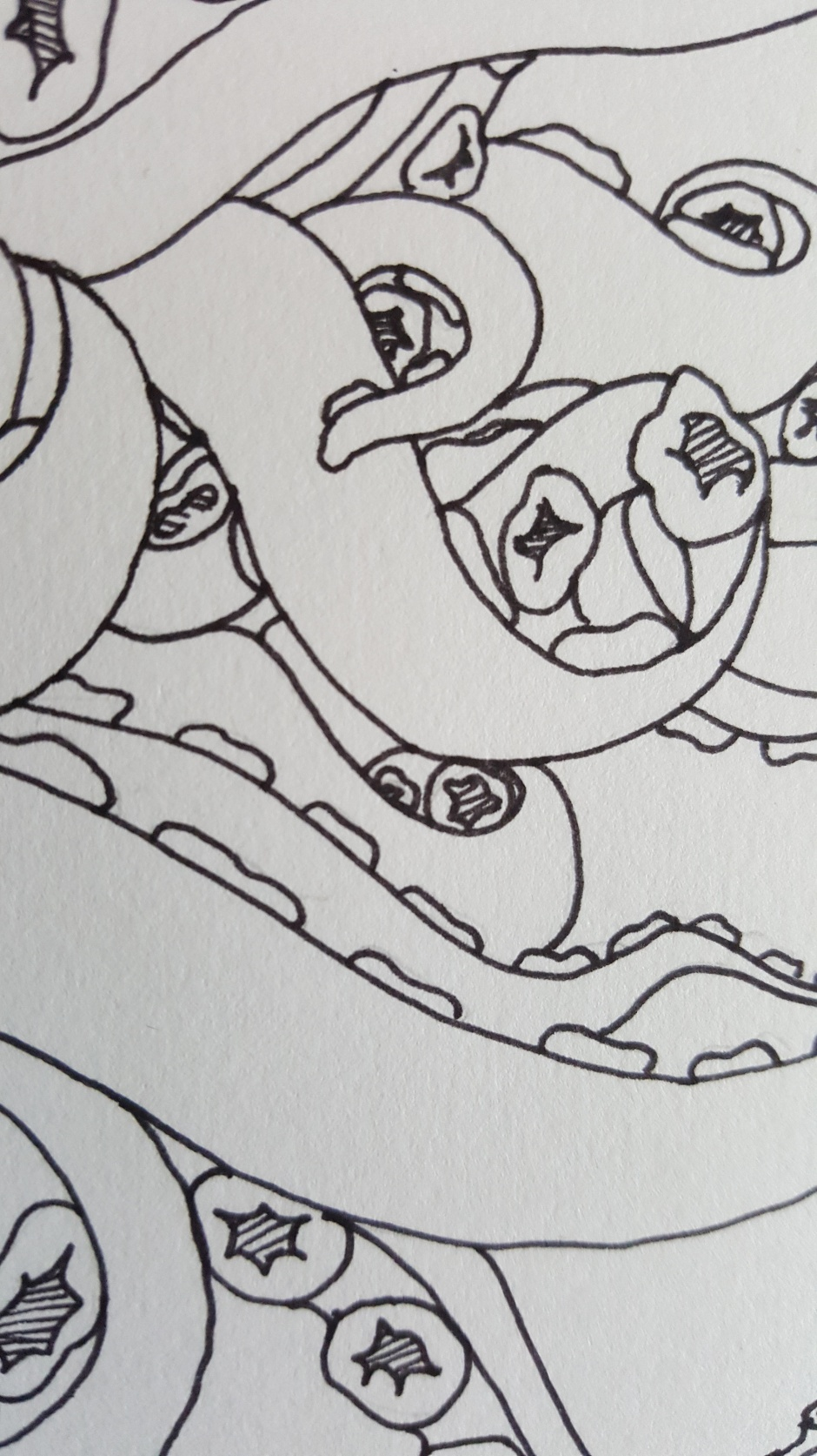 close up line drawing of tentacles